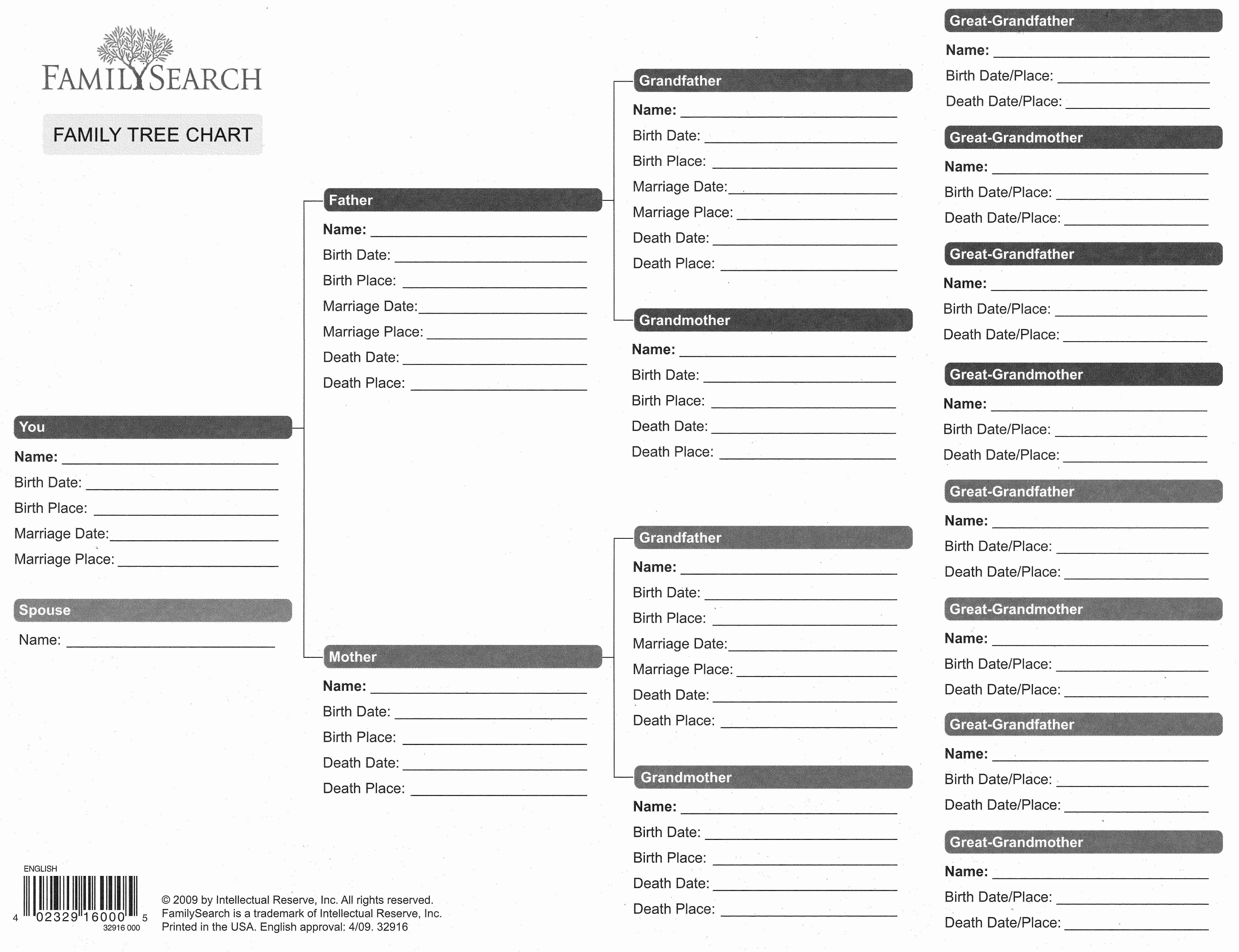 Templates For Family Tree Charts Beautiful Ancestry Forms Free - Free Printable Family History Forms