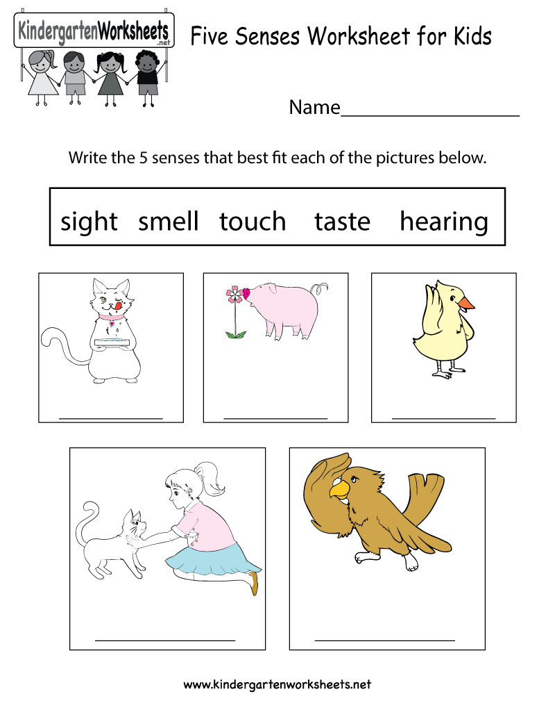 This Is An Easy Way To Learn About Five Senses. You Can Download - Free Printable Worksheets Kindergarten Five Senses