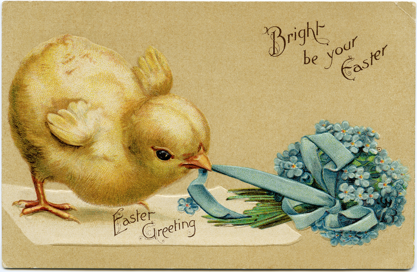 Vintage Easter Chick Postcard ~ Free Digital Image - Old Design Shop - Free Printable Vintage Easter Images