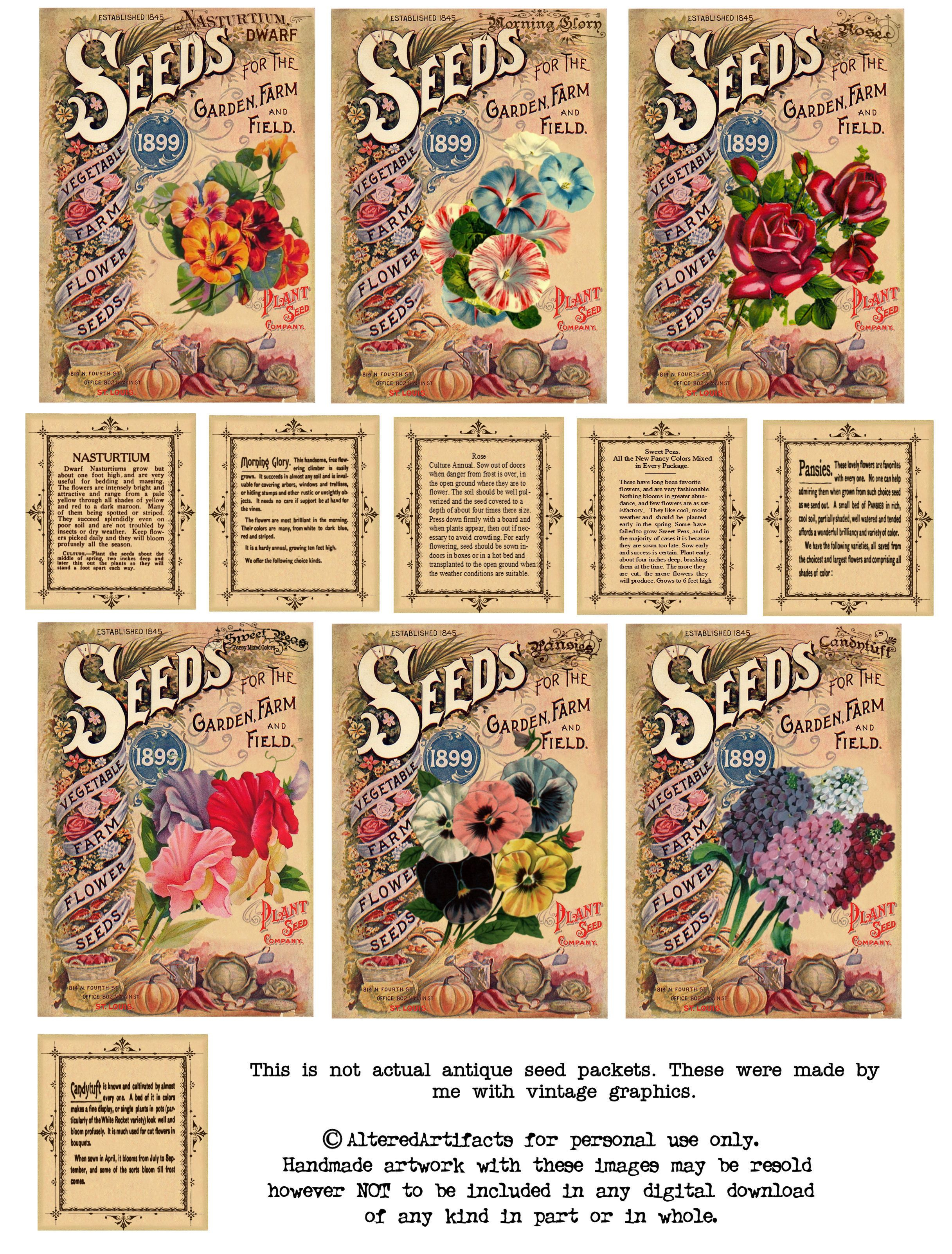 Vintage Seeds Art Free Print | Free Antique Flower Seed Packets - Free Printable Vintage Pictures