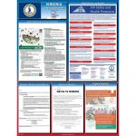Virginia Labor Law Posters 2019 | Poster Compliance Center   Free Printable Osha Posters